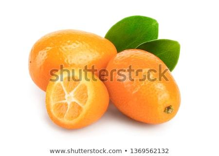 Cumquat or kumquat Stock photo © natika