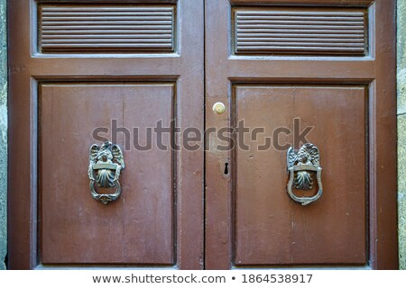 Traditional knocker shaped metal on a brown door Stock photo © pixachi