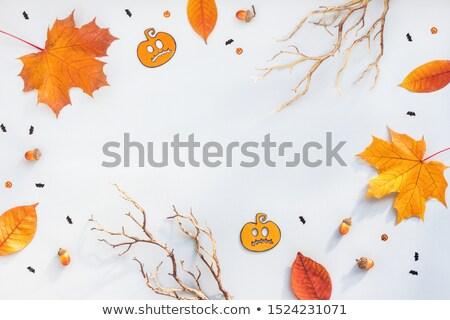 őszi · levelek · citromsárga · kék · asztal · ősz · levelek - stock fotó © fotoaloja