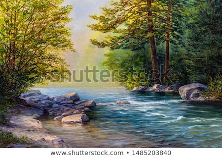 Nyírfa faág vízesés friss zöld fa Stock fotó © skylight