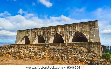 Fuerte adelaide fortificación cañón Mauricio árbol Foto stock © lkpro