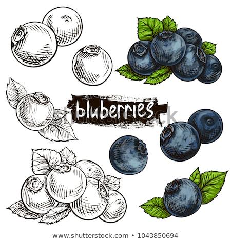 Desenho como frutas legumes Foto stock © user_9323633