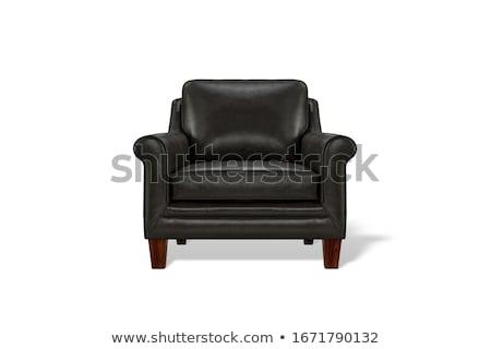 Bőr fotel izolált terv szoba bútor Stock fotó © shutswis