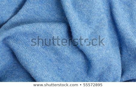 синий хлопка свитер мужчин одежду объект Сток-фото © shutswis