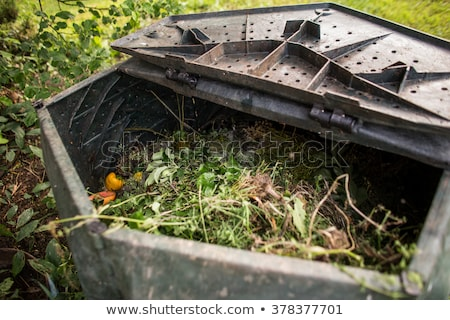 plastic composter in a garden   filled with decaying organic mat stock photo © lightpoet