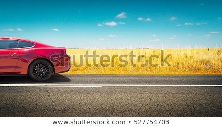 tribunal · scène · droit · avocat · Homme · juge - photo stock © bluering