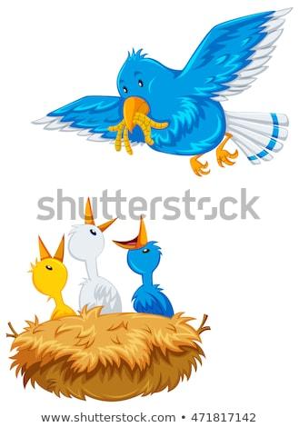 Mother bird feeding the offsprings Stock photo © bluering