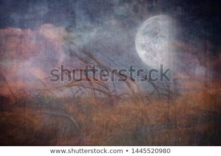 Stock photo: Grain Moon