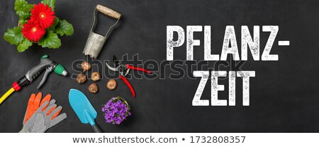 garden tools on a dark background   garden time stock photo © zerbor