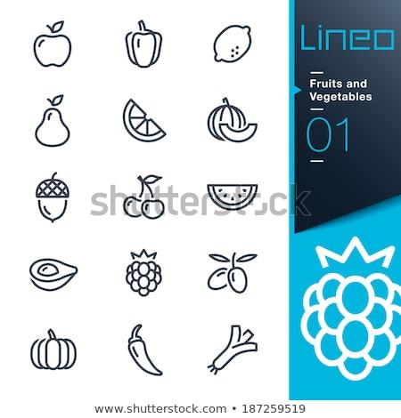 blackberry line icon stock photo © rastudio