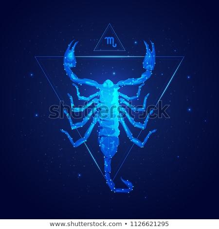 Escorpião zodíaco assinar círculo horóscopo astrologia Foto stock © Krisdog