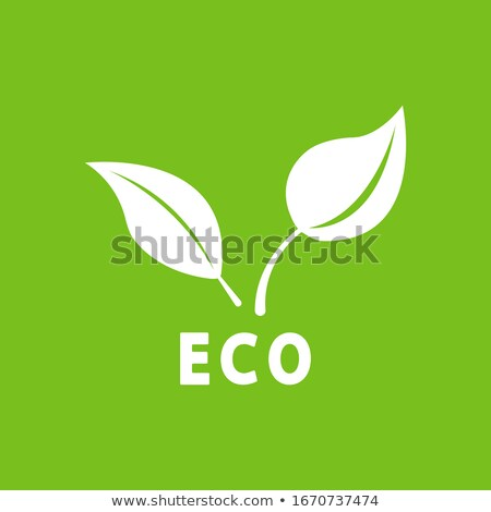 ecology nature element vector icon stock photo © ggs