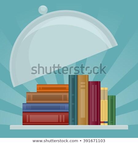 vektör · renkli · kitaplar · broşür · yalıtılmış - stok fotoğraf © popaukropa