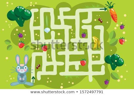 迷路 バニー 野菜 果物 実例 ウサギ ストックフォト © lenm