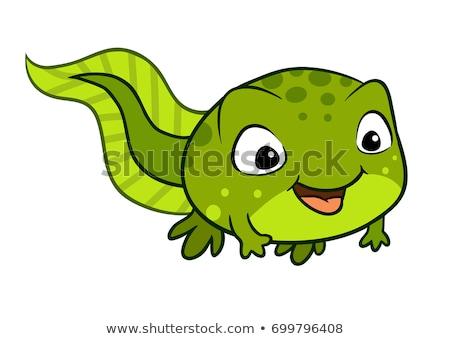 Mosolyog rajz ebihal illusztráció mosoly grafikus Stock fotó © cthoman