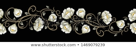 a floral border design stock photo © colematt