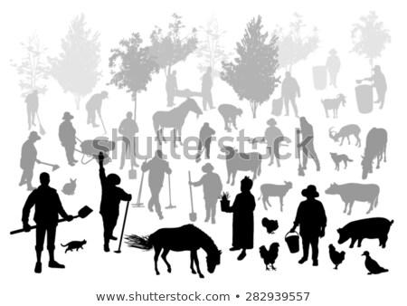 Gazdálkodás személy kezek áll széna bála Stock fotó © robuart