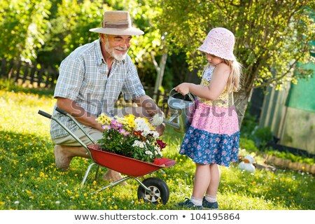 Senior and young women working together in flower garden at sunn Stock photo © boggy