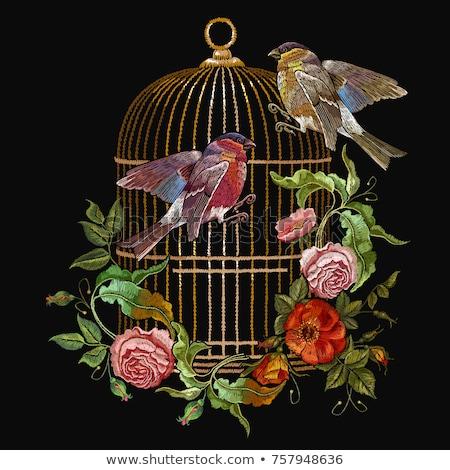 pássaro · ilustração · projeto · fundo · preto · animal · de · estimação - foto stock © netkov1