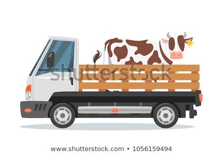 Animals On A Truck Foto d'archivio © curiosity