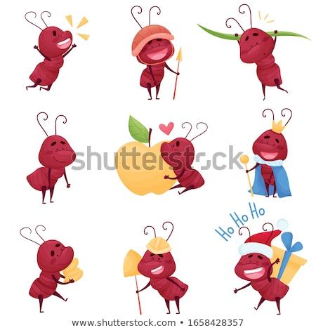 Ayarlamak termit hayvan böcek böcek renk Stok fotoğraf © bluering