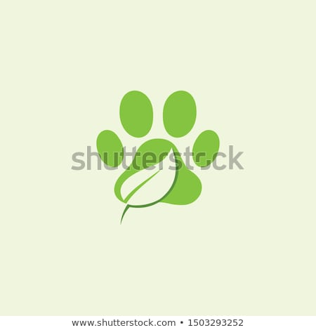 Natural Food Logotypes with Plant Leaves Flora Stock photo © robuart
