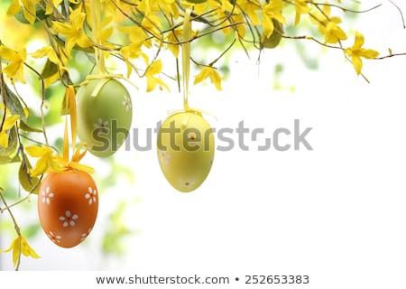 пасхальное яйцо весенний цветок весны фон пространстве зеленый Сток-фото © bdspn