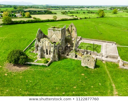 Ruins of medieval Cistercian abbey Stock photo © grafvision
