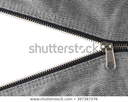 Zipper On Jeans Isolated Stock photo © Lightsource