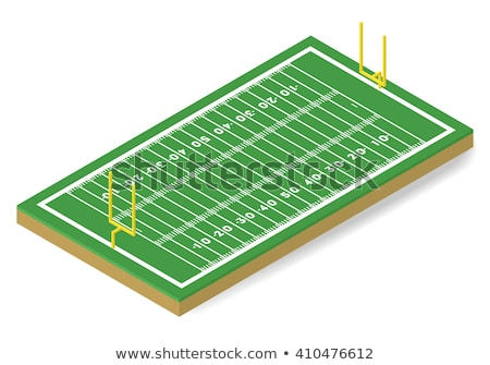 3d American football field icon with green grass and ball isolated on white background, vector illus Stock photo © MarySan