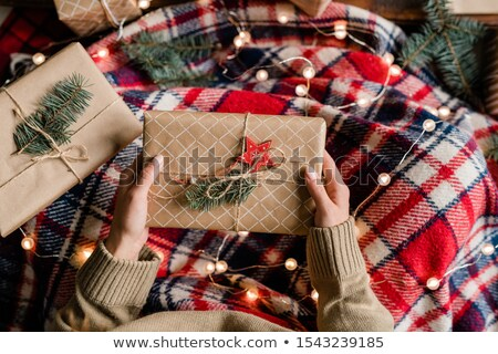 View of young woman wrapped into warm checkered plaid holding giftbox Stock photo © pressmaster