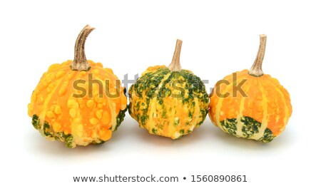 Small warted gourds with lumpy skins - green and yellow  Stock photo © sarahdoow