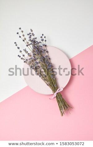 Organisch lavendel bos keramische plaat decoratief Stockfoto © artjazz