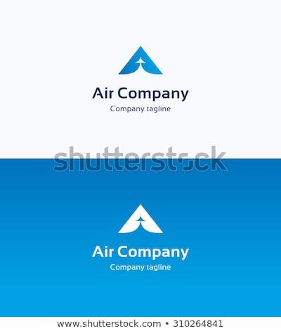 Plane Aero Transportation Symbol with Wings Vector Stock photo © robuart