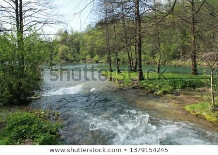 реке кристалл воды Сток-фото © photoblueice