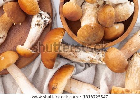 新鮮な · ヤマドリタケ属の食菌 · キノコ · ペニー · 白 - ストックフォト © antonio-s