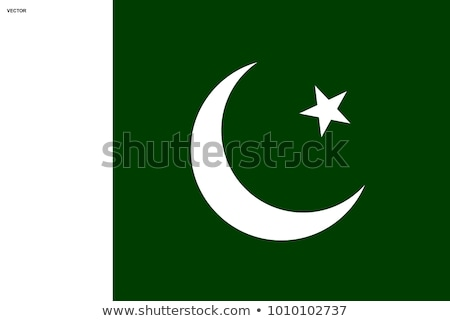 button in colours of Pakistan Stock photo © perysty