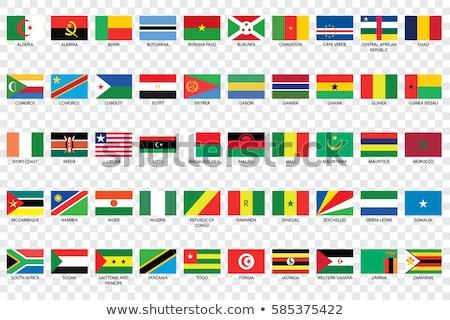 флаг Нигер тень белый фон черный Сток-фото © claudiodivizia
