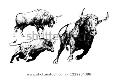 Bull queue typique espagnol puces pain Photo stock © jarp17