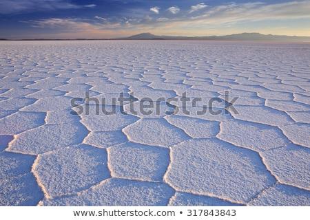 gedroogd · zout · zonsondergang · Utah · USA · landschap - stockfoto © DonLand