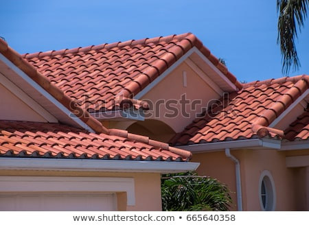 roof covered with red tiles Stock photo © Discovod