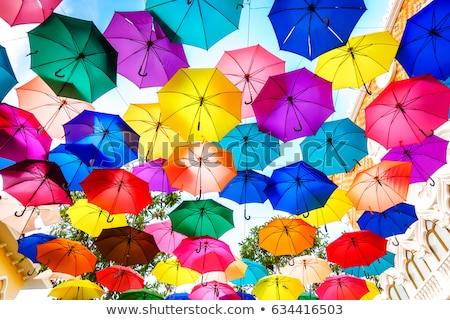 colorful umbrellas as street decoration stock photo © stevanovicigor