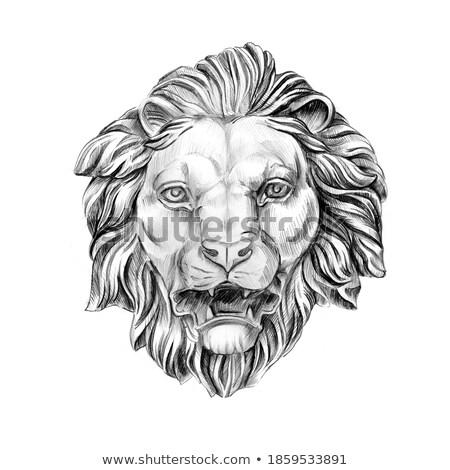 Cavaleiro leão pedra família crista Foto stock © searagen