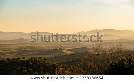 görmek · Toskana · manzara · İtalya · sonbahar · mavi · gökyüzü - stok fotoğraf © w20er