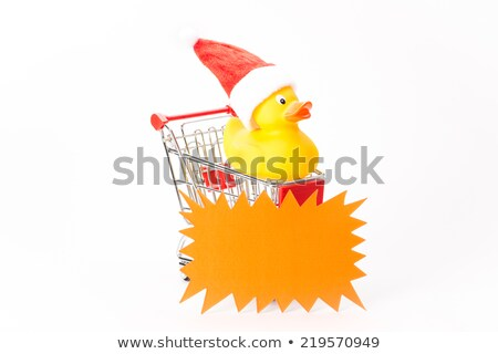 ショッピング クリスマス カモ 白 おもちゃ バス ストックフォト © Studio_3321