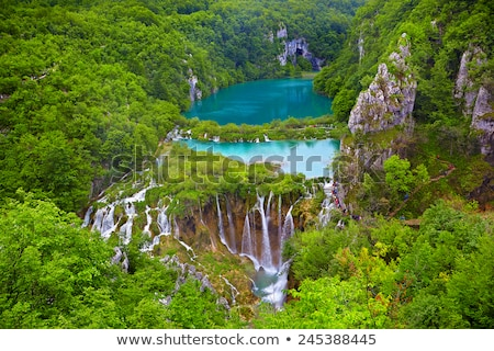 cachoeira · floresta · cristal · água · árvore · jardim - foto stock © fesus