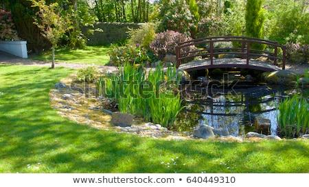 Peu pont étang atterrissage faible herbe Photo stock © aetb