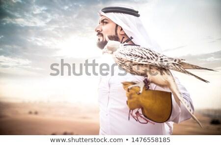 Falcoaria deserto ilustração natureza fazenda Águia Foto stock © adrenalina