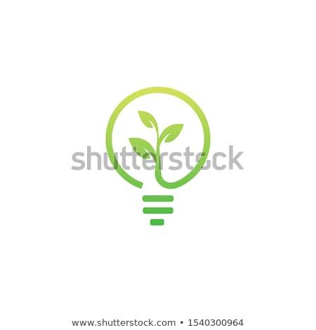 лампа · зеленый · вектора · икона · дизайна · цифровой - Сток-фото © rizwanali3d