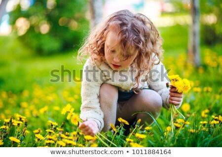 Stok fotoğraf: çocuklar · çayır · karahindiba · şanslı · aile · gökyüzü